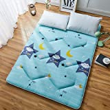 GJFLife Floor Hypoallergenic Tatami Mattress Topper Collapsible Mat, Breathable Polyester Sleeping pad Japanese Futon Protector Cover-I 120x200x4cm