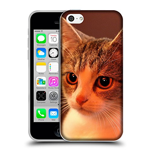 Just Phone Cases Coque de Protection TPU Silicone Case pour // V00004222 Charmante maison chaton // Apple iPhone 5C