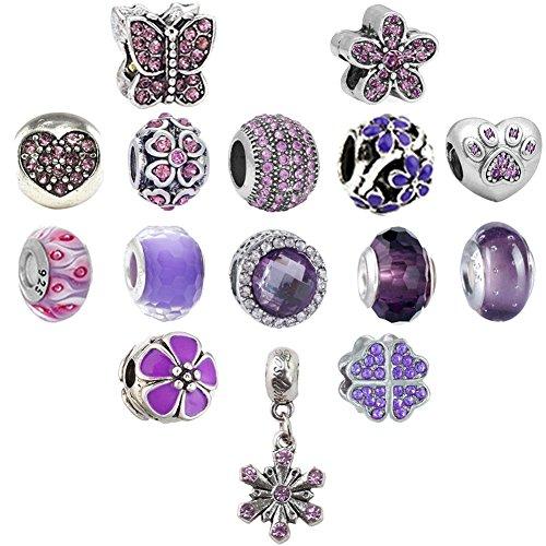 N'joy Rhinestone Birthday Charms Beads, Assorted Crystal Clap, Stoper, Dangle Pendant, Fit European Bracelet, Birthstone (16PCS Flower, June, February-Purple) (Purple Rhinestone Charm)