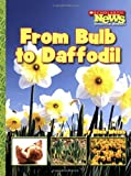 From Bulb to Daffodil, Ellen Weiss, 053118787X