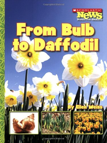 from-bulb-to-daffodil-scholastic-news-nonfiction-readers