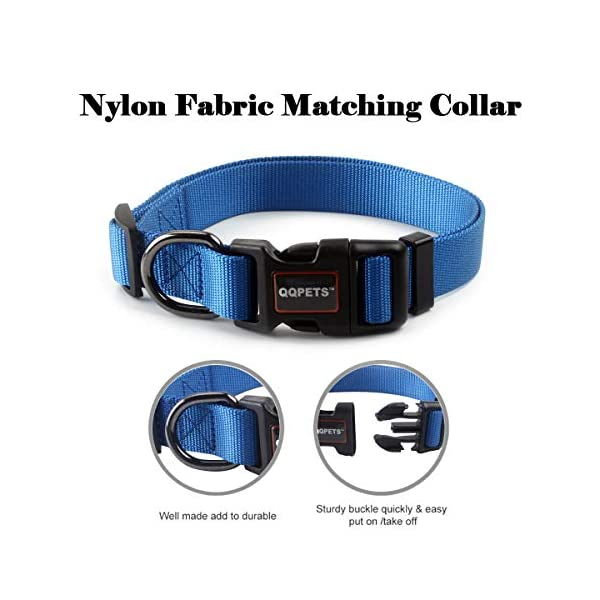 QQPETS Dog Leash and Collar Set for Medium or Large Dogs Training Walking, Adjustable Collar with Breakaway Buckle and… Click on image for further info. 4