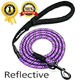 Migoo Pet - Climbing Rope Dog Leash Reflective Stitching - 6 ft Strong Chew Proof Rope Dog Leashes Large Medium Dogs - Comfortable Handle Walking Leash The Biggest Pulling Dogs