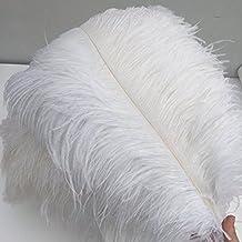 Shekyeon White 16-18inch 40-45cm Ostrich Feather DIY Craft Feather by Shekyeon