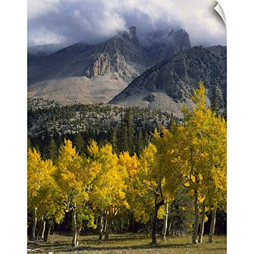 - CANVAS ON DEMAND Nevada, Great Basin National Park Wall Peel Art Print, 16