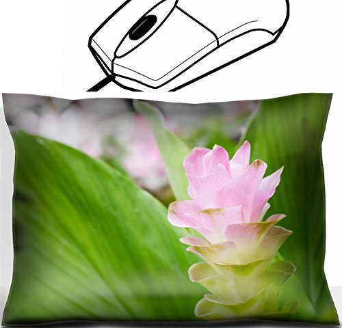 Office Decor Wrist Supporter Pillow design 22133108 Is a biennial with roots in the soil When the rainy season begins early spring ()