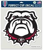 Collegiate Georgia Bulldogs New Mascot Perfect