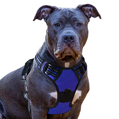 Eagloo Dog Harness No Pull, Walking Pet Harness with 2 Metal Rings and Handle Adjustable Reflective Breathable Oxford Soft Vest Easy Control Front Clip Harness Outdoor for Medium Dogs Blue