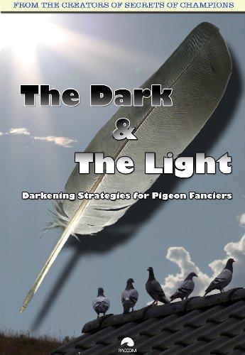 Pigeon Racing: The Dark & The Light