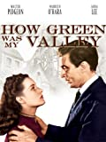 How Green Was My Valley (AIV)