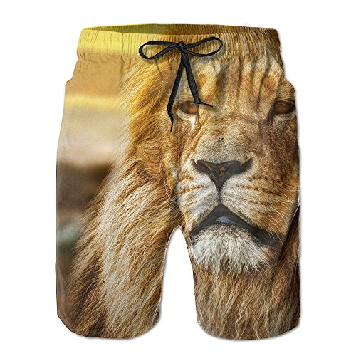 Vcddjns4 Lions Africa Men's Running Pants Swimming Trousers Leisure Shorts Breathable Beach Pants -