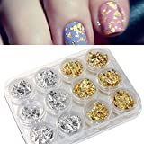 12 PCS Nail Art Gold Silver Paillette Flake Chip Foil DIY Acrylic UV Gel Pager