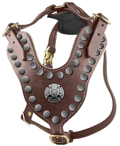 Dean and Tyler The Crusader Beautiful Solid Brass Hardware Leather Harness with Felt Padding, L, 79-104 cm, Brown
