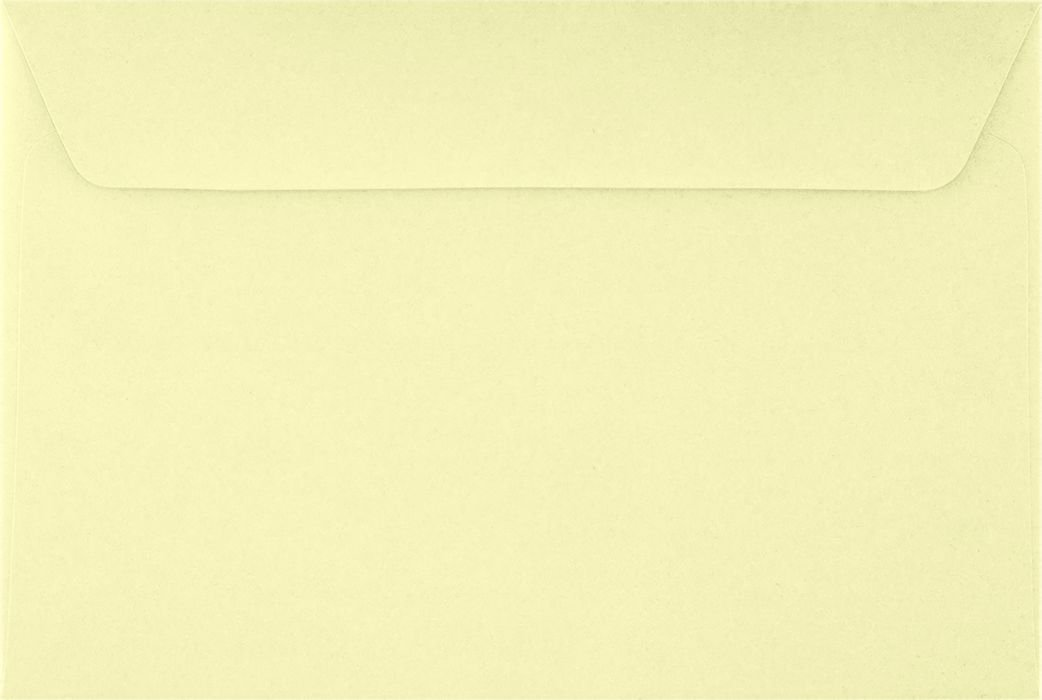 6 x 9 Booklet Envelopes - Yellow Lemonade (500 Qty.) Envelopes.com