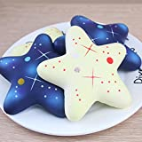 Finance Plan Fun Galaxy Starfish Scented Squishy