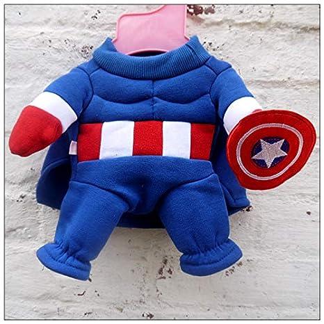 Capitán América disfraz de perro: Amazon.es: Productos para ...
