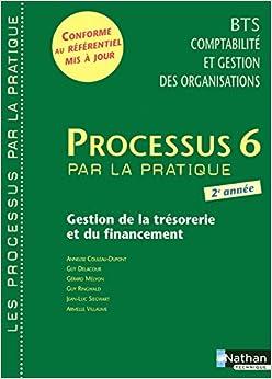 Book Processus 6 Gestion de la tresorerie et du financement BTS CGO 2e annee (French Edition)
