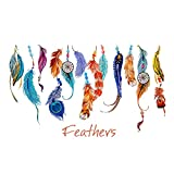 """SWORNA Nature Series Colorful Beautiful Feathers Vinyl Removable DIY Wall Art Mural Sticker Decor Decal - Lady Bedroom Office Sitting Living Room Hallway Kitchen Glass Door Window Nursery 19""""H X 29""""W"""