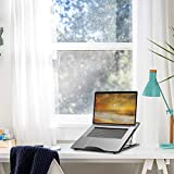 MaxGear Laptop Stand, Ergonomic Mesh Laptop