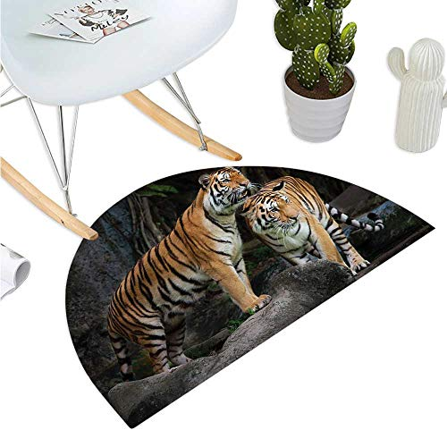 Animal Semicircular Cushion Tiger Couple in The Jungle on Big Rocks Image Wild Cats in Nature Image Print Entry Door Mat H 39.3