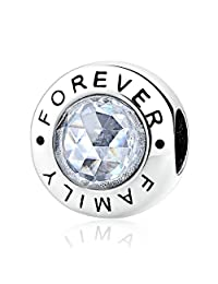 Everbling Family Forever with Clear CZ 925 Sterling Silver Bead Fits European Pandora Charm Bracelet