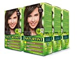 chestnuts Naturtint Permanent Hair Color - 4N Natural Chestnut, 5.28 fl oz (6-pack)