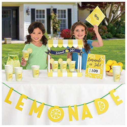 (Mini Lemonade Stand Decorating Kit - Banner, Tent Card, Table Decoration, Money Envelope and Stickers)