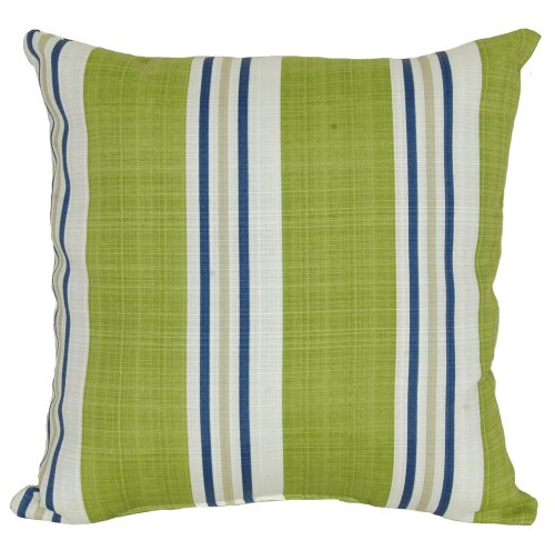 Codson Park Square Manzi Kiwi Stripe Outdoor Pillow with Knife Edge Finish, 20-Inch