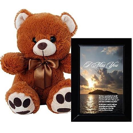 Amazon.com: I Miss You Plush Teddy Bear and Love Poem Gift ...