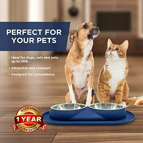 Bonza Double Cat Bowls, 12 Ounce Premium Stainless Steel Dog Bowls and Cat Food Bowls with Non-Spill Silicone Base. for Small Dogs and Cats