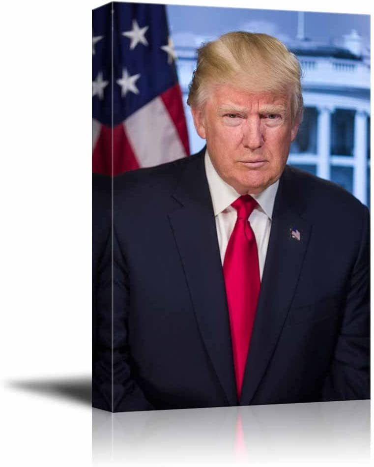 wall26 - Portrait of Donald Trump (45th President of The United States) - American Presidents Series - Canvas Wall Art Gallery Wrap Ready to Hang - 16x24 inches