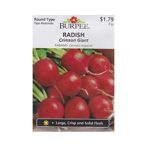 The Dirty Gardener Heirloom Burpee Crimson Giant Radishes, 400 Seeds