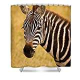 Pixels Shower Curtain (74'' x 71'') ''Zebra''