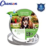 Flea and Tick Collar for Dogs Natural Dog Anti Flea Collar with 8 Month Protection 24.4''Fits for Small Medium Large Pets (2019 New Version)