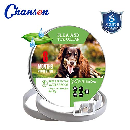 Flea and Tick Collar for Dogs Natural Dog Anti Flea Collar with 8 Month Protection 24.4''Fits for Small Medium Large Pets