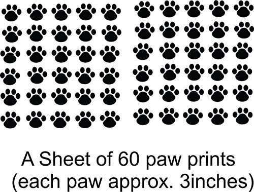 Wild Animal Paw Prints (Best Selling Cling Transfer : Cat Kitten Puppy Dog Pet Leopard Cheetah Wild Animal Paw Print Wall Decal Sticker Size: 21 Inches X 31 Inches – 22 Colors Available)