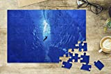 Ice Climber Rappelling into Cave (8x12 Premium Acrylic Puzzle, 63 Pieces)