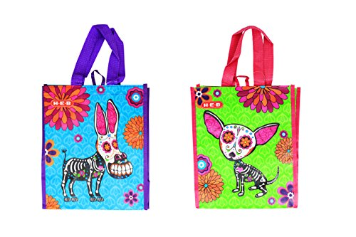Sugar Skull Day of the Dead Reusable Small Bags (Candy Skull Costume)