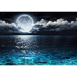 wall26 Beautiful Ocean View With the Moon Resting Above it - Wall Mural, Removable Sticker, Home Decor - 100x144 inches