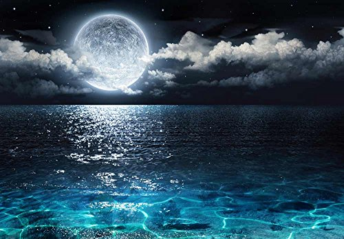 Beautiful Ocean View With the Moon Resting Above it Wall Mural