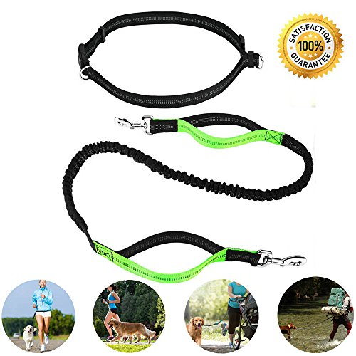 Skunk Dog Costume Large (Hands Free Dog Leash Bungee for Running Walking Jogging Sport Retractable Hiking Leash Reflective Tape Dual Handle Extendable Adjustable Pet Training Lead Waist Belt For Medium and Large Dog)