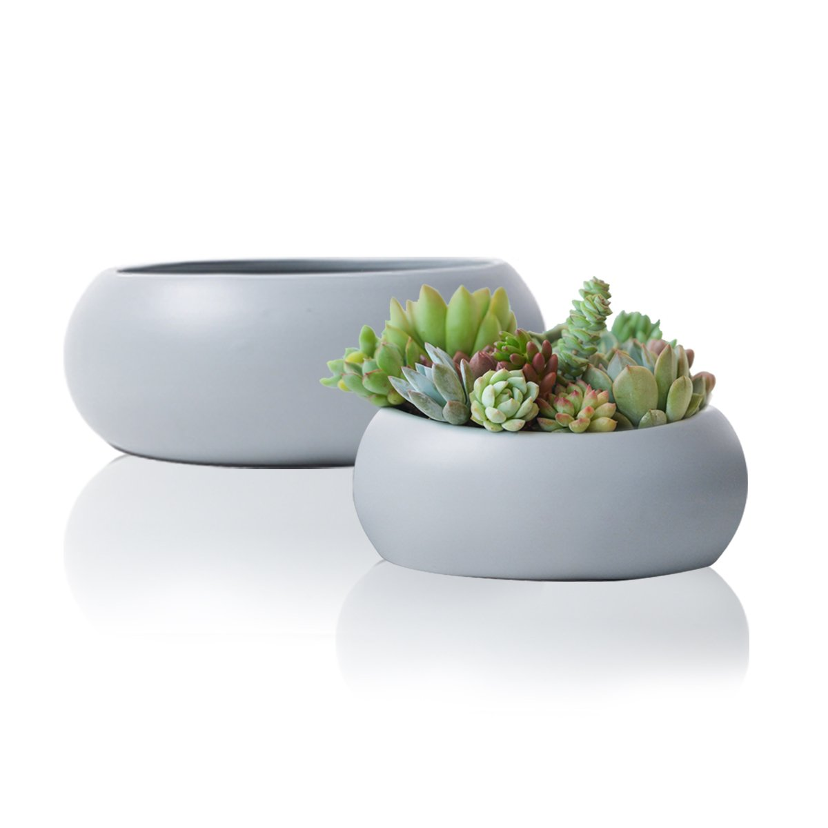 Succulent Pots Planter Set2, Grey Ceramic Cactus Container, 10.6'' Large Garden Indoor Flower Bowl by LA JOLIE MUSE