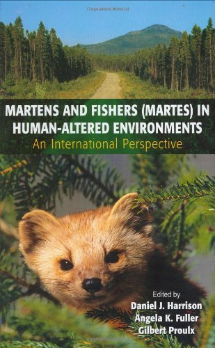 Download Martens and Fishers (Martes) in Human-Altered Environments Pdf