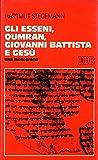 img - for Gli Esseni, Qumran, Giovanni Battista e Gesu'. Una monografia. book / textbook / text book