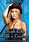 Free eBook - Rough Ride With A Cowboy