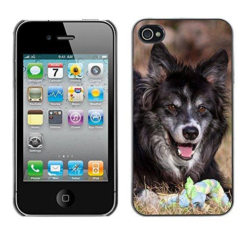 Premio Sottile Slim Cassa Custodia Case Cover Shell // F00010276 Loup chien // Apple iPhone 4 4S 4G