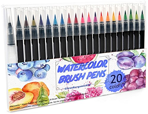 Watercolor Brush Pens Set, 20 Color Paint Markers + 1 Bonus Refillable Water Brush Pen, Soft Tip for Art, Drawing, Coloring Page, Calligraphy, Sketching and Paint Effects, Portable Non-Toxic by CitrusBergamia