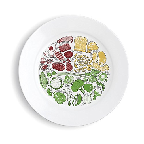 Marianne's Plate *** Picture CHINA Portion Control Plate *** (Plastic Control Version)
