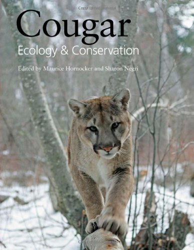 Cougar - Cougar: Ecology and Conservation