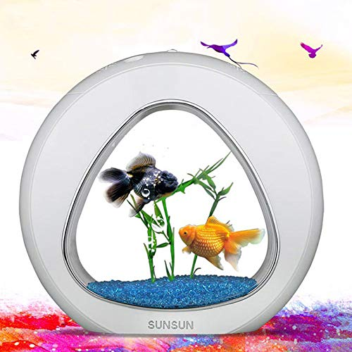 Pukido Ecology Mini Nano Fish Tank Aquarium with Built-in Filter and LED Light - (Color:, Size: M) (Types Of Grass Seed For Lawns Uk)